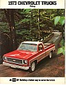 Chevy_1973_Pickup.JPG